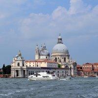 Венеция. Старая таможня :: Татьяна Ларионова