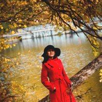 Краски осени :: Надежда Журавкова