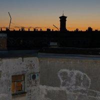 Ночные крыши Санкт-Петербурга :: skijumper Иванов