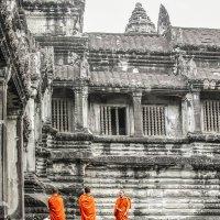 Angkor Wat | Cambodia :: Sergio Za