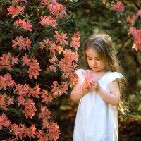 Маленький ангелочек :: Виктория Дубровская