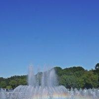 Поющий фонтан в парке Царицыно :: Леонид leo