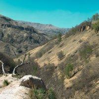 Кабардино-Балкария, долина реки Гедмыш :: Руслан Комаров