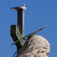 На высоте.Скульптура Спасителя на фасаде собора. :: Тамара