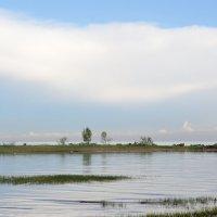 на Финском заливе... #3 :: Андрей Вестмит