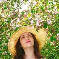 Цветение в яблоневом сад. :: Сергей Гутерман