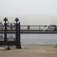 туман из Румянцевского садика :: Елена