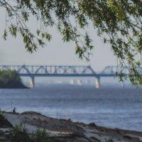 Амурский мост! Г.Комсомольск-на-Амуре! :: Ирина Антоновна