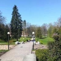 Парк Кадриорг, Таллин :: veera (veerra)
