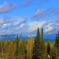 Осень в Алатау :: Сергей Чиняев