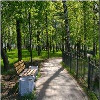 В парке :: lady v.ekaterina