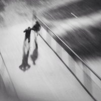 Ветер :: Марина Влади-на