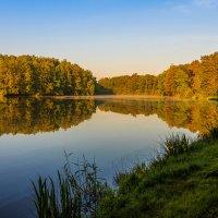 Утром на озере :: Waldemar F.