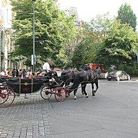 Прага. :: Владимир Драгунский