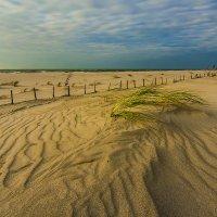 Пляж :: Lusi Almaz