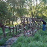 Мостик через ручей. Особо охраняемый... :: Владимир Безбородов