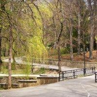 Уютный парк весной :: Галина