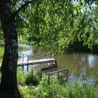 Журчит река под занавес берёзовых ветвей... :: Татьяна Георгиевна
