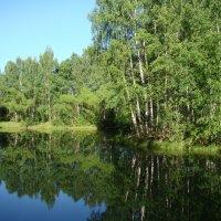 У озера в конце мая :: Татьяна Георгиевна