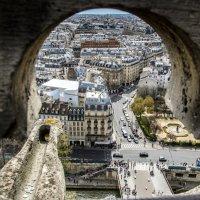 Париж,вид с Нотр-дам-де-Пари :: Наталия