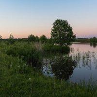 Майский вечер на реке. :: Виктор Евстратов