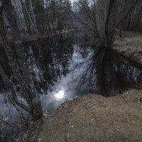 Чёрная речка. :: михаил суворов