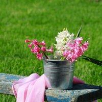 Первый тёплый день весенний (1) :: Наталья Казанцева