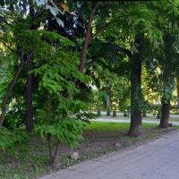 В Наташином сквере (панорама) :: Александр Буянов