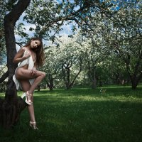 ______ :: Светлана Виноградова