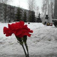 память :: Владимир