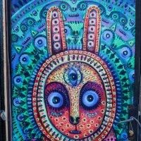 Заяц который любит грибы :: Андрей Нибылица