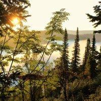 Утром в Алатау :: Сергей Чиняев