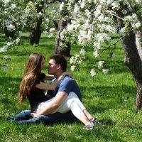 Весна :: Татьяна Георгиевна