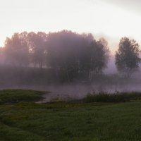 с сиреневым туманом :: cfysx