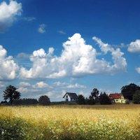 Хорошо иметь домик в деревне! :: Lusi Almaz