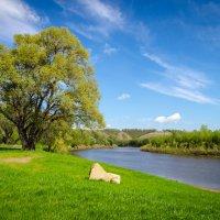 берег реки Ик. :: Ирек Галиуллин