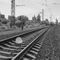Гонимые ветром :: Валерий Михмель