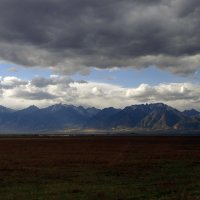 На осенней земле под облаками :: Елена Тренкеншу