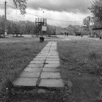 Входная полоса :: Валерий Михмель