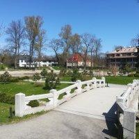 Мостик к японскому саду, Кадриорг, Таллин :: veera (veerra)