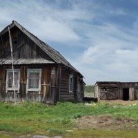 Остатки деревни :: Светлана Рябова-Шатунова