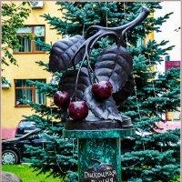 Слово предоставляется вишне... :: Vladimir Semenchukov