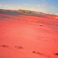 Берег Атлантика.  Намибиа. :: Jakob Gardok