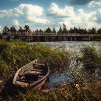 У старой деревенской плотины......... :: Александр Селезнев