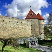 Эстония - Таллин :: Liudmila LLF