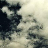 Облако с профилем старика. :: Елена Kазак