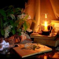 Поэтический вечер :: Нэля Лысенко