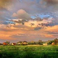 Пёстрые облака :: Лара Симонова