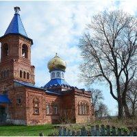 церковь в Барколабово. :: Paparazzi