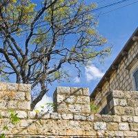 За  каменной стеной... :: Vanda Kremer